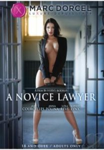 A Novice Lawyer 2014
