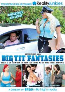 Big Tit Fantasies 2014