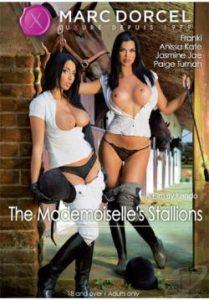 The Mademoiselle's Stallions 2014