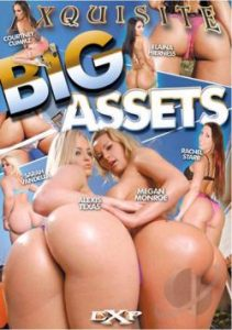 Big Assets 2012