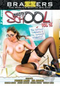 Big Tits At School 16 (2013)