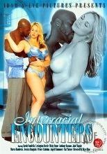 Interracial Encounters 2012