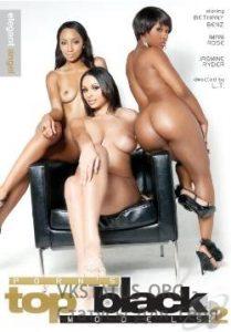 Porn's Top Black Models 2 (2010)
