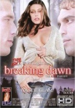 This Isn't The Twilight Saga - Breaking Dawn 2011