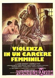 Violence in Women's Prison 2003