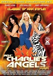 Not Charlie's Angels XXX 2010