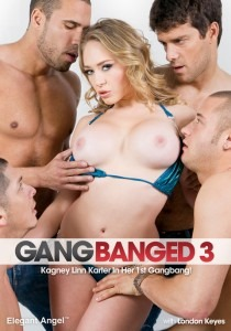 Gangbanged 3 2012