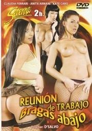 Reunión-de-Trabajo-Bragas-Abajo-2006-Español.jpg