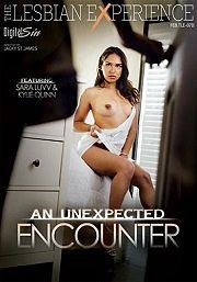 Película porno An Unexpected Encounter 2016 XXX Gratis